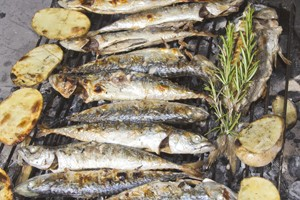 are-mackerel-sardines-herring-and-pilchards-safe-when-pregnant_55536