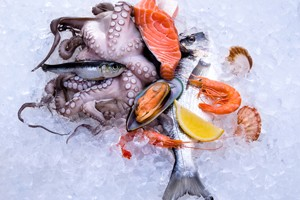 are-seafood-and-shellfish-safe-in-pregnancy_59038