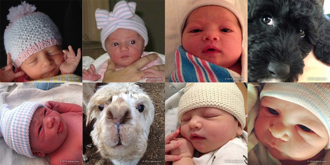 ashton-and-mila-share-first-baby-pic-and-reveal-their-newborns-name_61623
