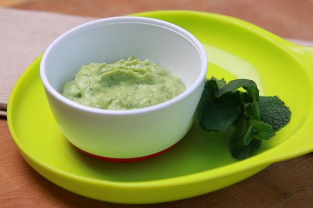 avocado-and-mint-puree_42218