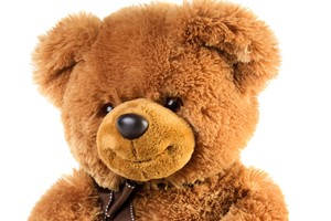 beware-a-visit-from-the-classroom-bear-_55741