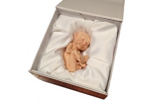 bizarre-or-beautiful-3d-model-of-your-unborn-baby_56215