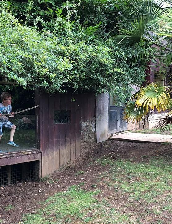 bristol-zoo_208278