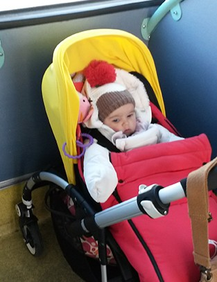 bugaboo-bee5-stroller-review_84128