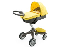 buyers-guide-to-buggies_55606