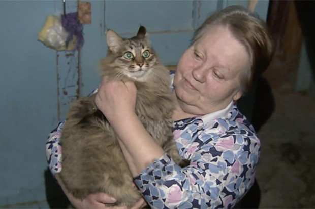 cat-saves-abandoned-baby-from-freezing-to-death_82891