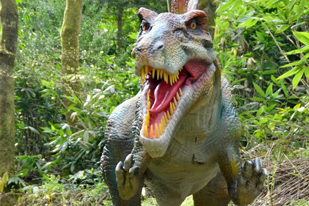 combe-martin-wildlife-and-dinosaur-park-review-for-families_59479