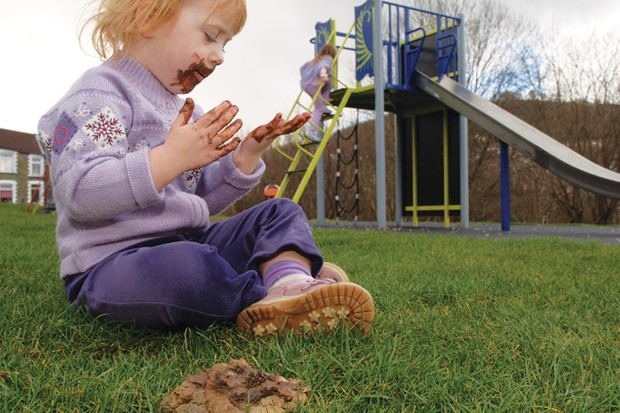 council-campaign-shows-toddler-eating-dog-mess_5363