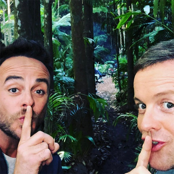 dec and ant on im a celeb
