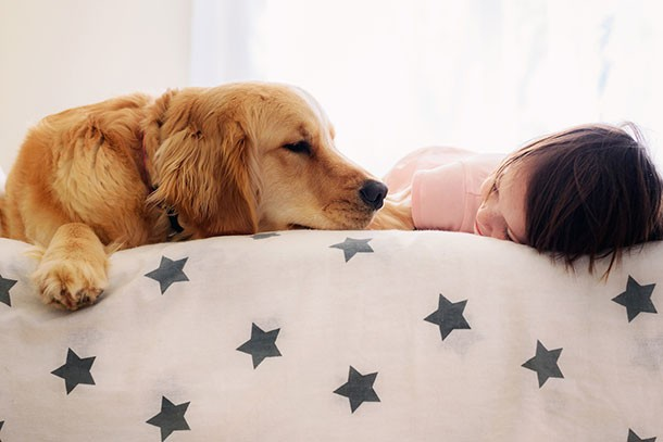 dogs-and-children-need-to-know-safety-info_174523