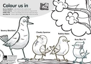 downloadable-rspb-big-garden-birdwatch-activity-sheets_143336