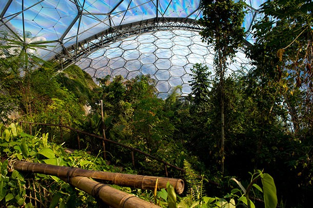 eden-project-review-for-families_59934