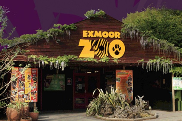 exmoor-zoo-review-for-families_58940