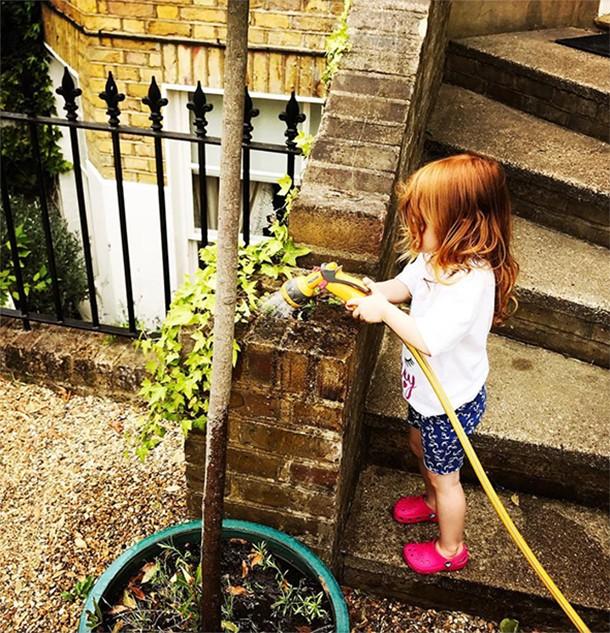 honey krissy wood watering