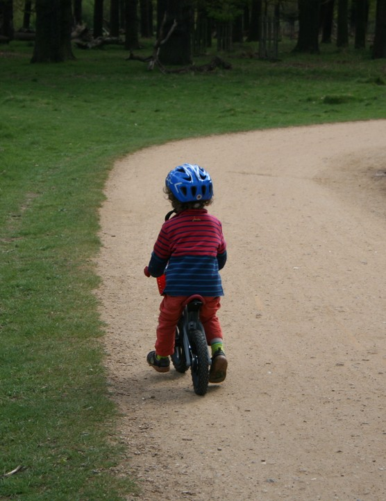 firstbike-cross-balance-bike_126068