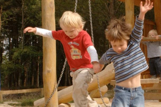 haldon-forest-park-review-for-families_58930