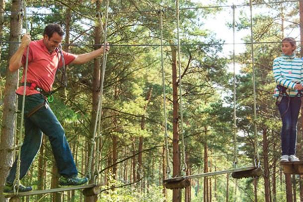 haldon-forest-park-review-for-families_58931