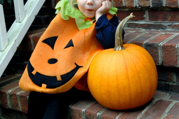 halloween-your-essential-guide-for-family-fun_16474