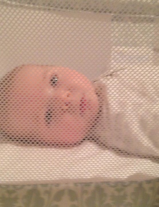 halo-bassinest-co-sleeping-crib_138824
