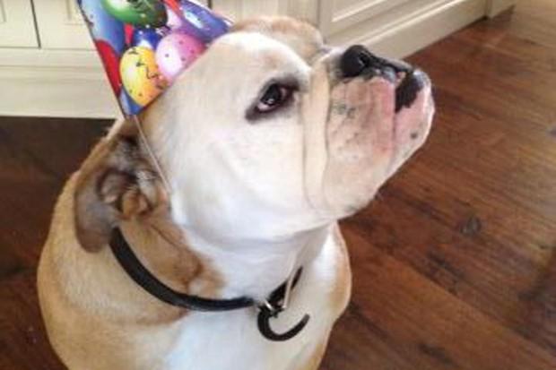 happy-13th-birthday-brooklyn-beckham_34279