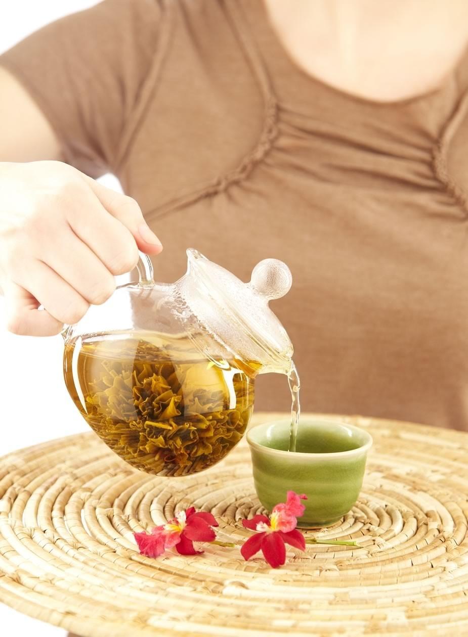 herbal-remedies-in-pregnancy_338