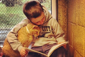 homeless-cats-help-children-with-their-reading_56088