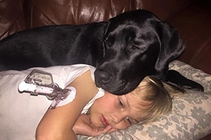 how-jedi-the-diabetes-dog-saved-his-little-boys-life_146812