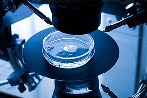 ivf-costs_178554