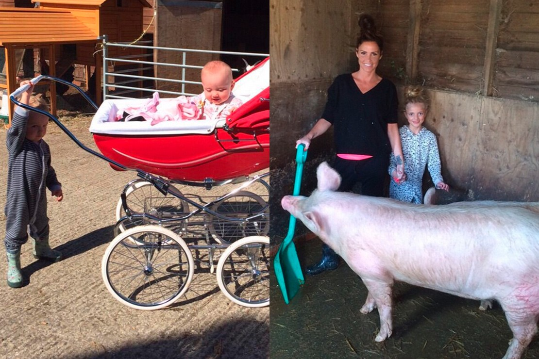 katie-prices-suprising-pram-choice-for-a-day-on-the-farm_87079