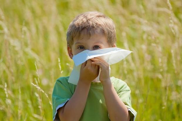 keep-hay-fever-at-bay_70486