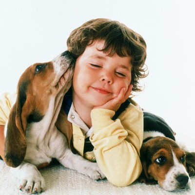 keep-toddlers-safe-around-dogs_70238