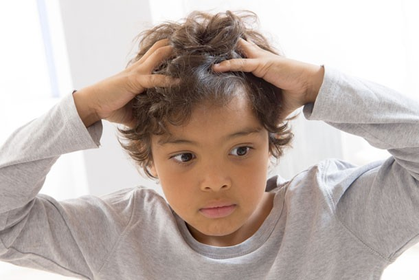 lice-only-like-clean-hair-and-other-headlice-myths-busted_60847