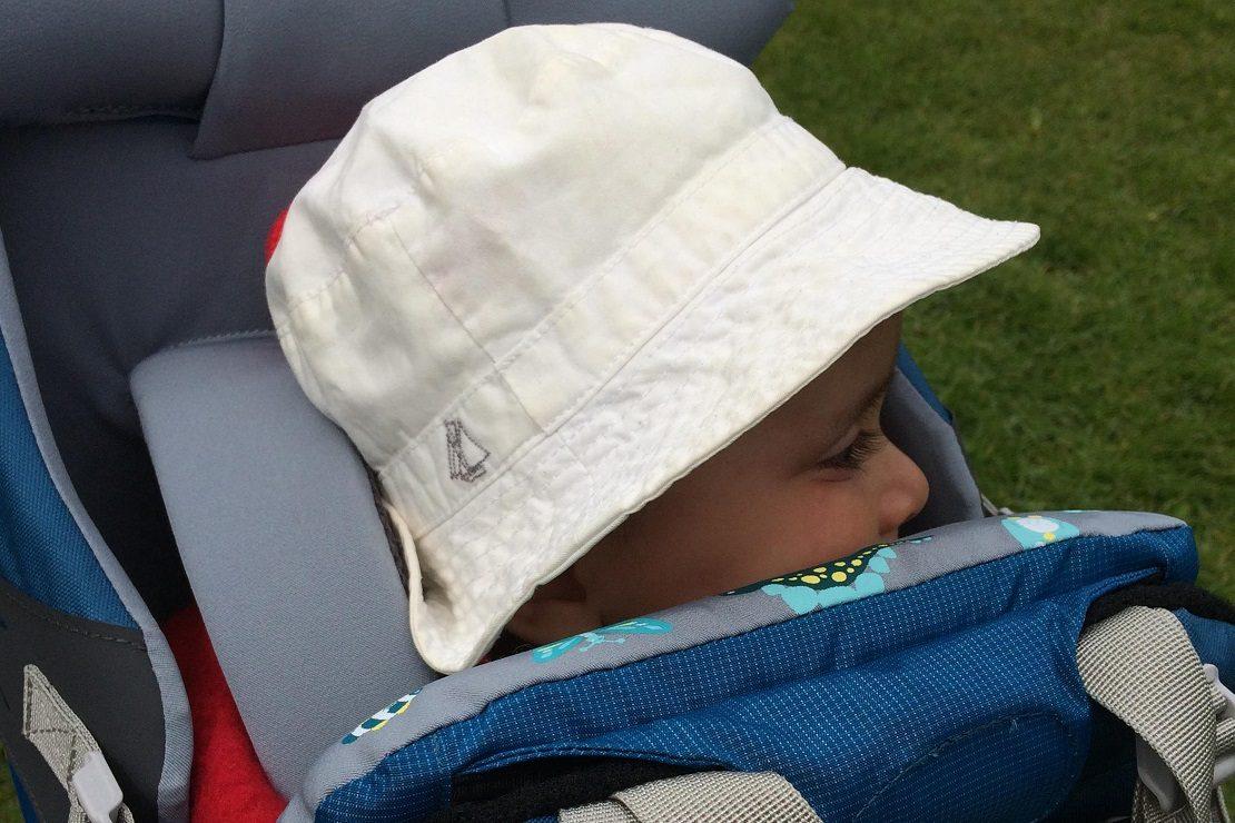 LittleLife Freedom S4 Child Carrier
