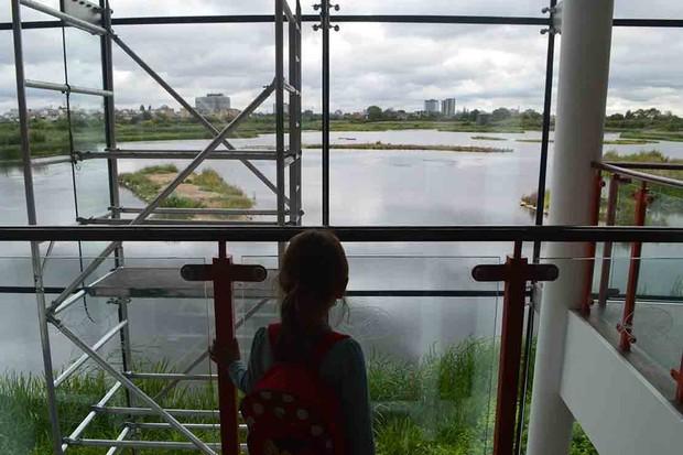 london-wetlands-centre-barnes_212473