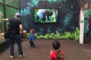 marwell-zoo,-hampshire_210340
