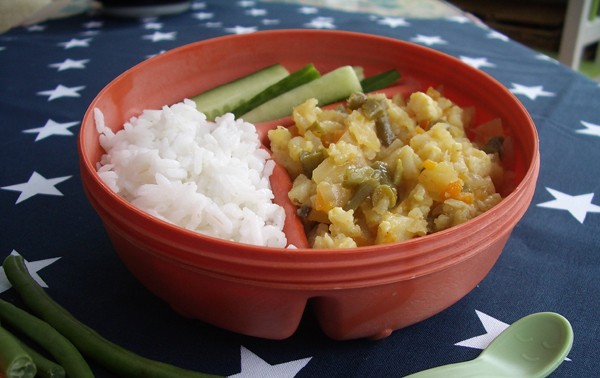 mild-vegetable-korma_44733