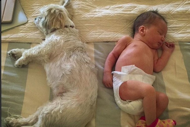 milla-jovovich-shares-amazing-pic-of-new-baby-with-family-dog_86562