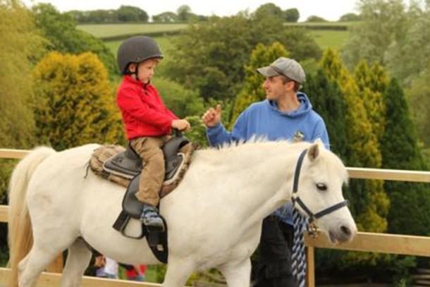 miniature-pony-centre-review-for-families_59191