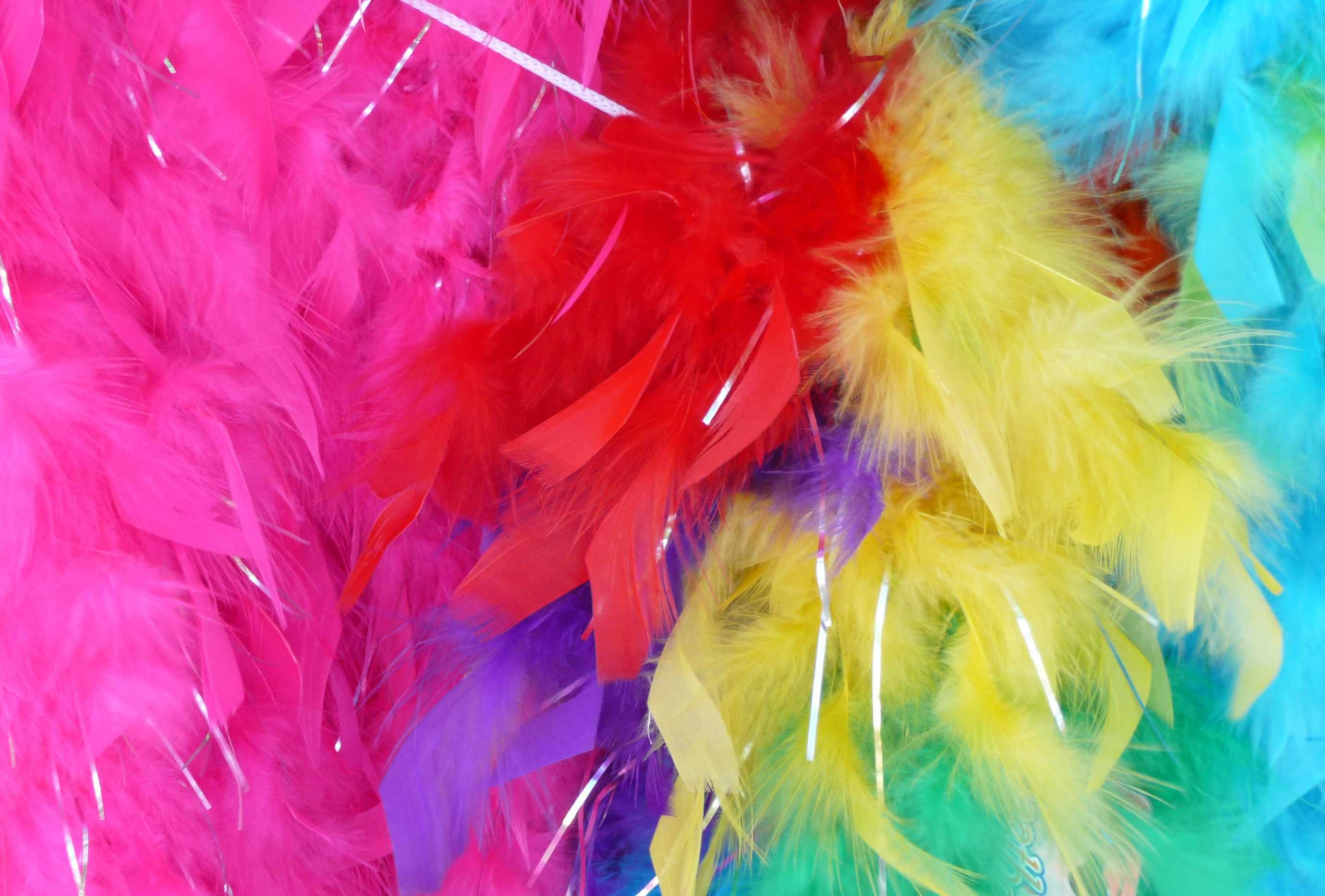 mum-spends-entire-wage-on-daughters-dance-costumes_27794