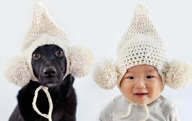 mum-takes-matching-portraits-of-dog-and-baby-pics_53507