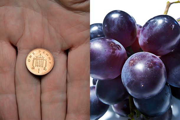 mums-warn-about-dangers-of-pennies-and-grapes-near-toddlers_174905