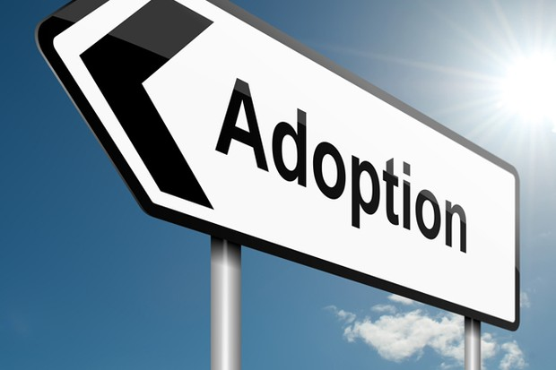 new-hotline-and-map-to-simplify-adoption-process_73515