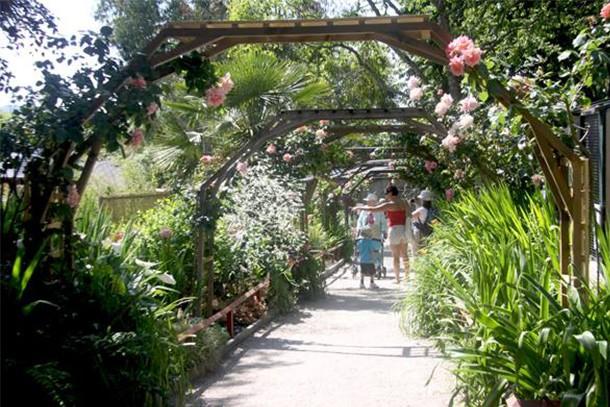 paradise-park-review-for-families_60010
