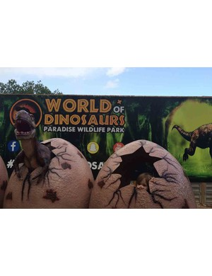 paradise-wildlife-park,-hertfordshire_212285