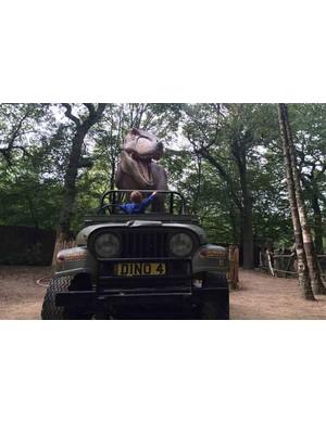 paradise-wildlife-park,-hertfordshire_212287