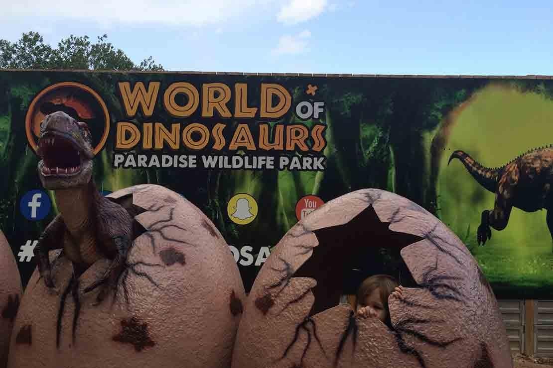 paradise-wildlife-park-hertfordshire_b