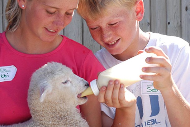 pennywell-farm-review-for-families_59619
