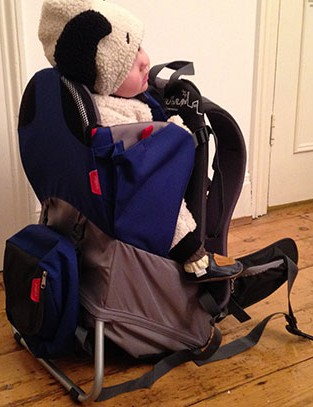 phil-and-teds-parade-child-carrier_151127