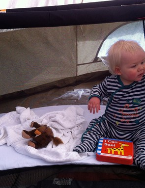 phil-and-teds-traveller-travel-cot_134678