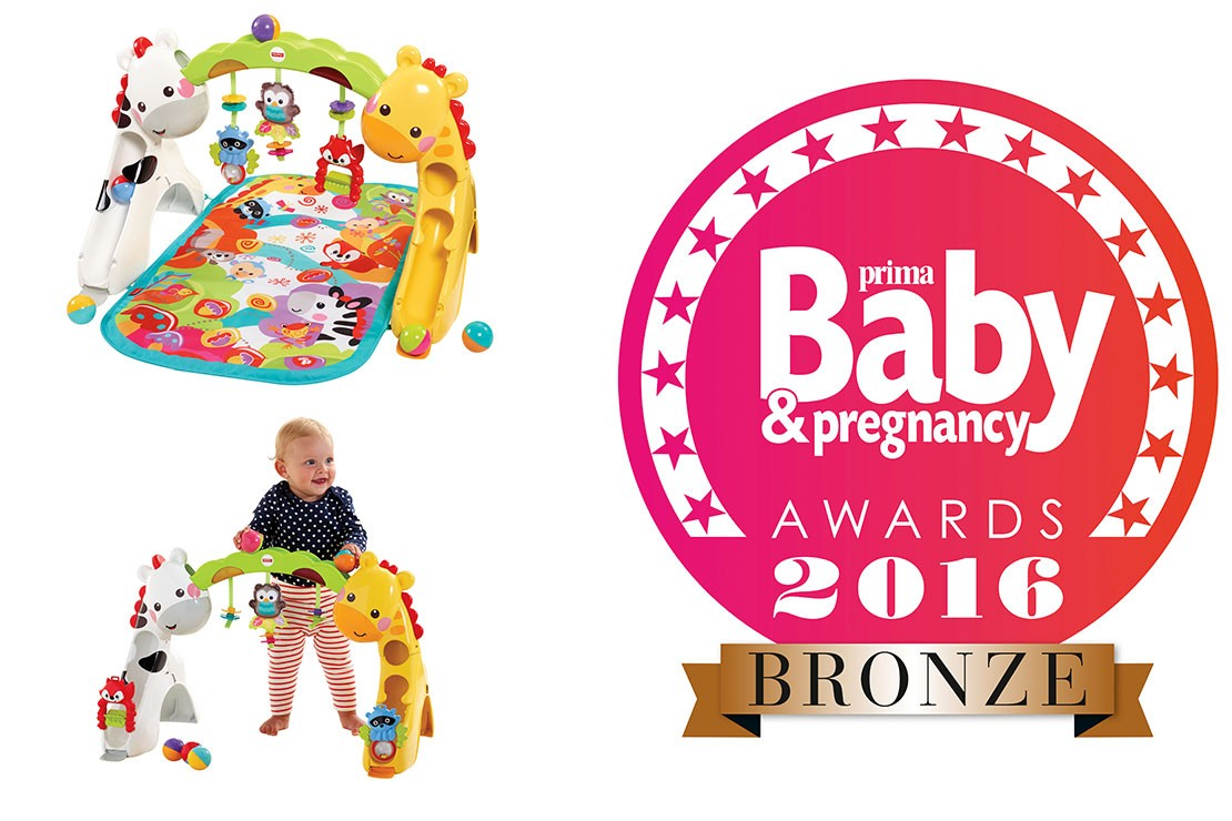 prima-baby-awards-2016-baby-toy-0-12mths_146372